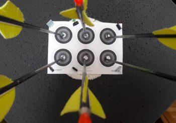 Nuotolinėse šaudymo iš lanko varžybose varžėsi 9 šalių sportininkai